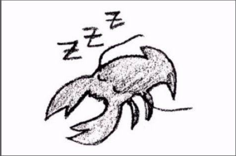 RA-News-Lobster-Theremin-starts-ambient-sub-label-Lobster-Sleep-Sequence-1
